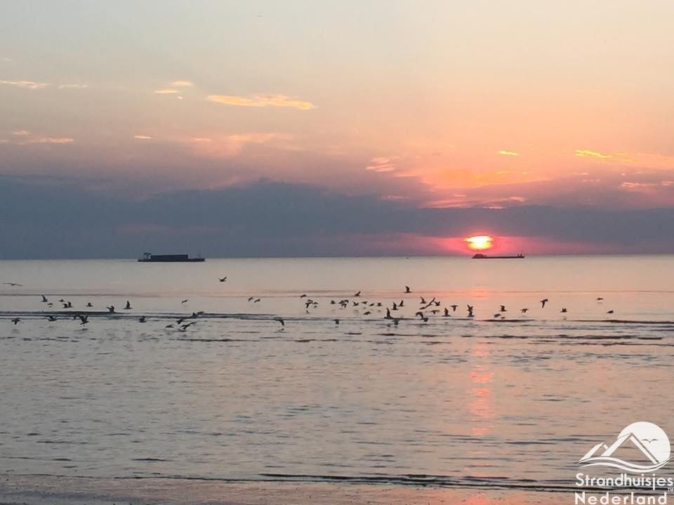 zee Cadzand