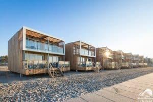 Strandhaus mit Hund- Hoek van Holland