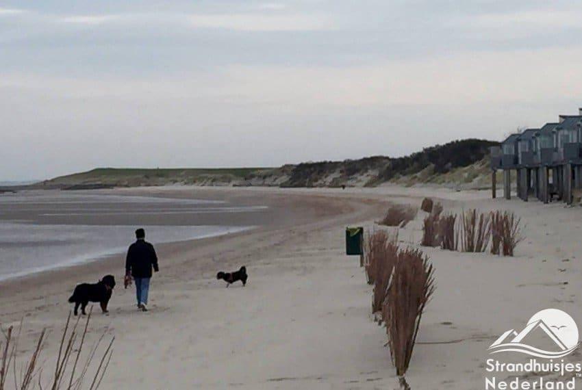 Honden welkom bij strandhuisjes Kamperland