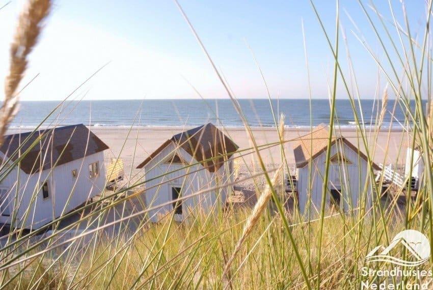 Stranddroom duinzicht
