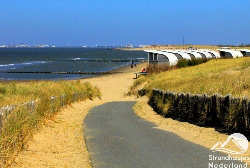 Verharde duinen bij strandhuisjes Groede