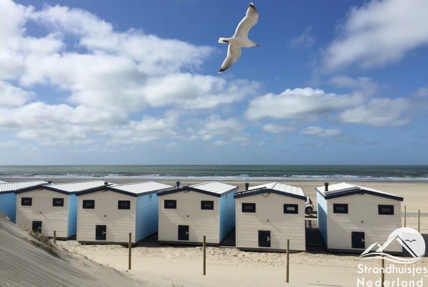 strandhuisjes aan zee Hoek van Holland