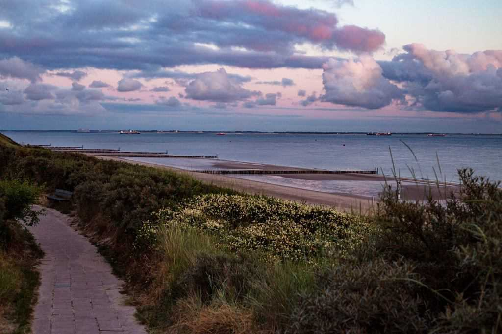 Duinen strand Dishoek