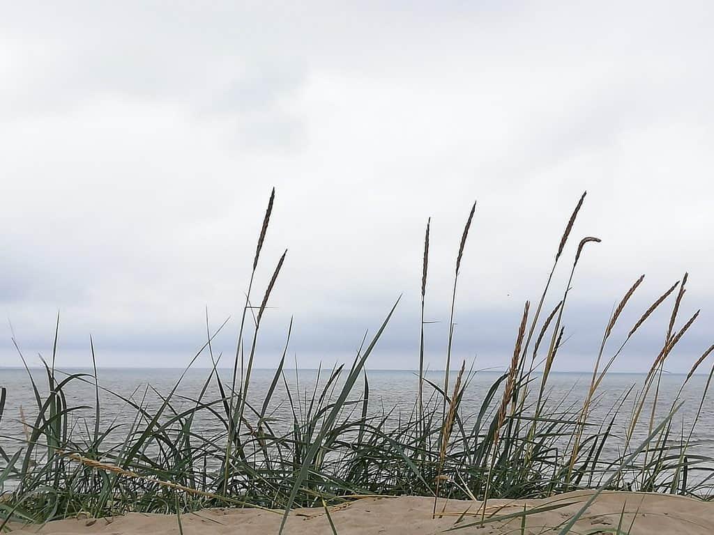 Strand IJmuiden aan Zee