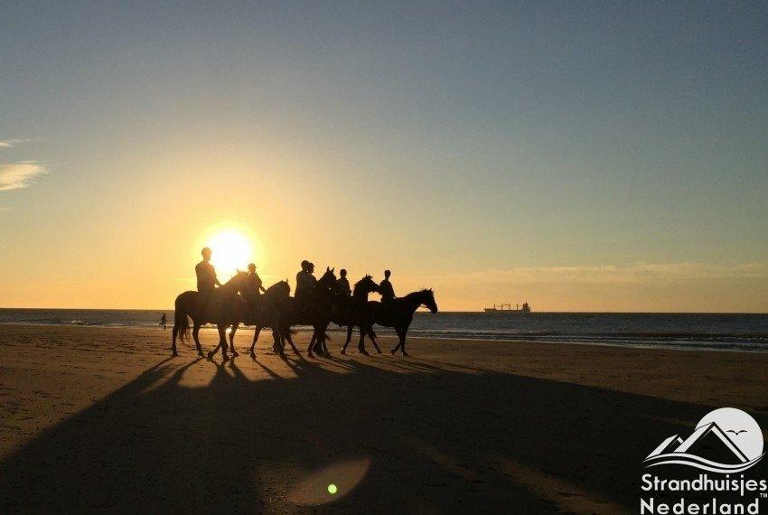 peerden strand Nieuwvliet